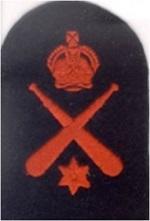 Royal Cdn Navy ELECTRICIANS MATE Trade Badge-Blue//White